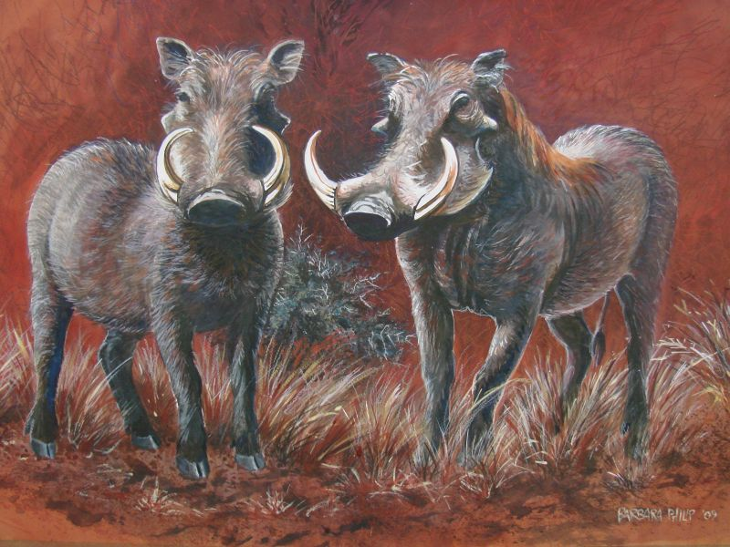 Two Warthogs.(620 x 430 mm terracotta paper with watercolour, gouache and pastel.)
