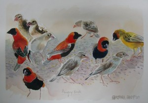 Sketch of The Birds Feeding