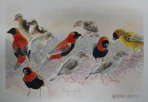 Sketch of The Birds Feeding
