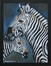 Zebras, Mother & Babe. Watercolour & Gouache on black paper, 620 x 430 mm
