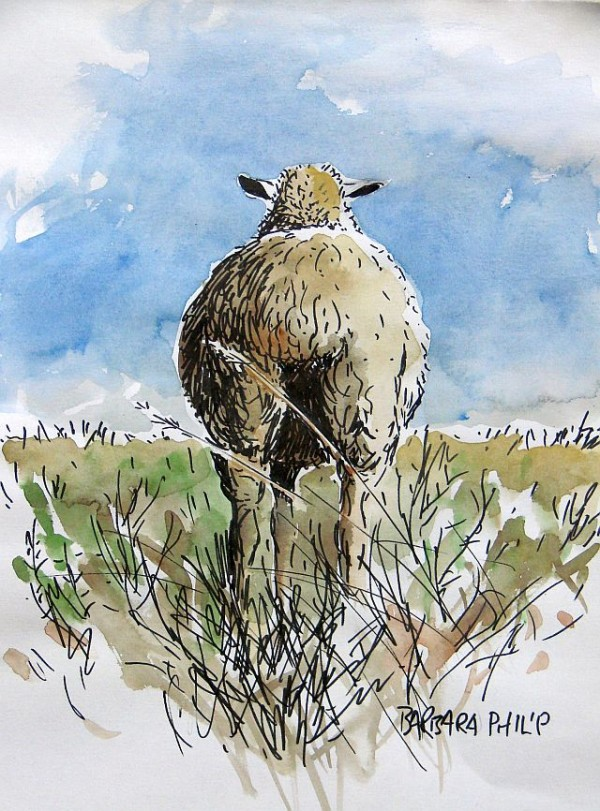 "sheep sketch, ""I know you're there"""